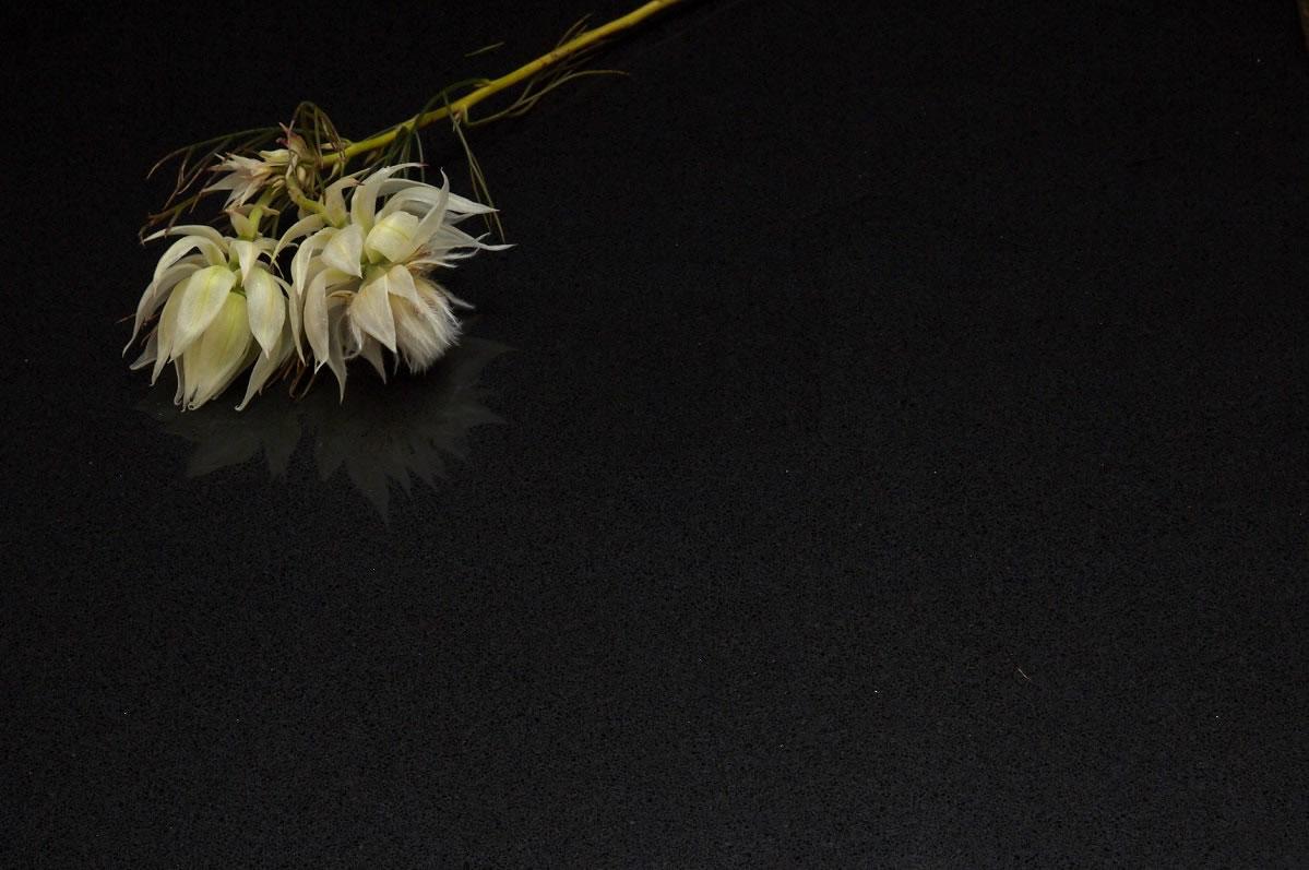 midnight black  u0026gt  quantum quartz  u0026gt  quantum quartz  natural